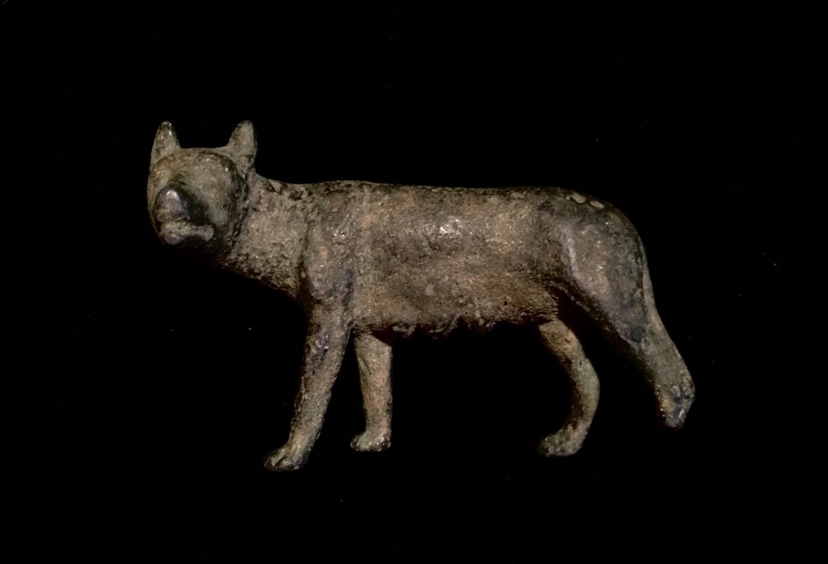Roman wolf