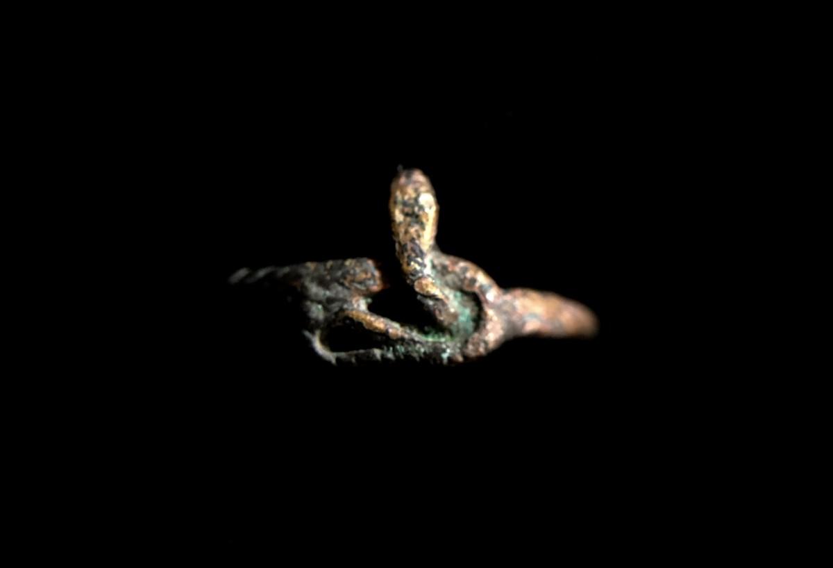 Roman snake ring